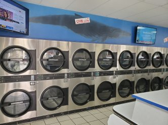 Beautiful High Income Laundromat with  Very Desirable Lease Terms Main Image #1